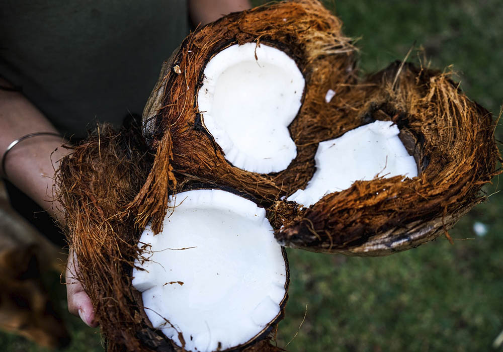 holding opened coconuts
